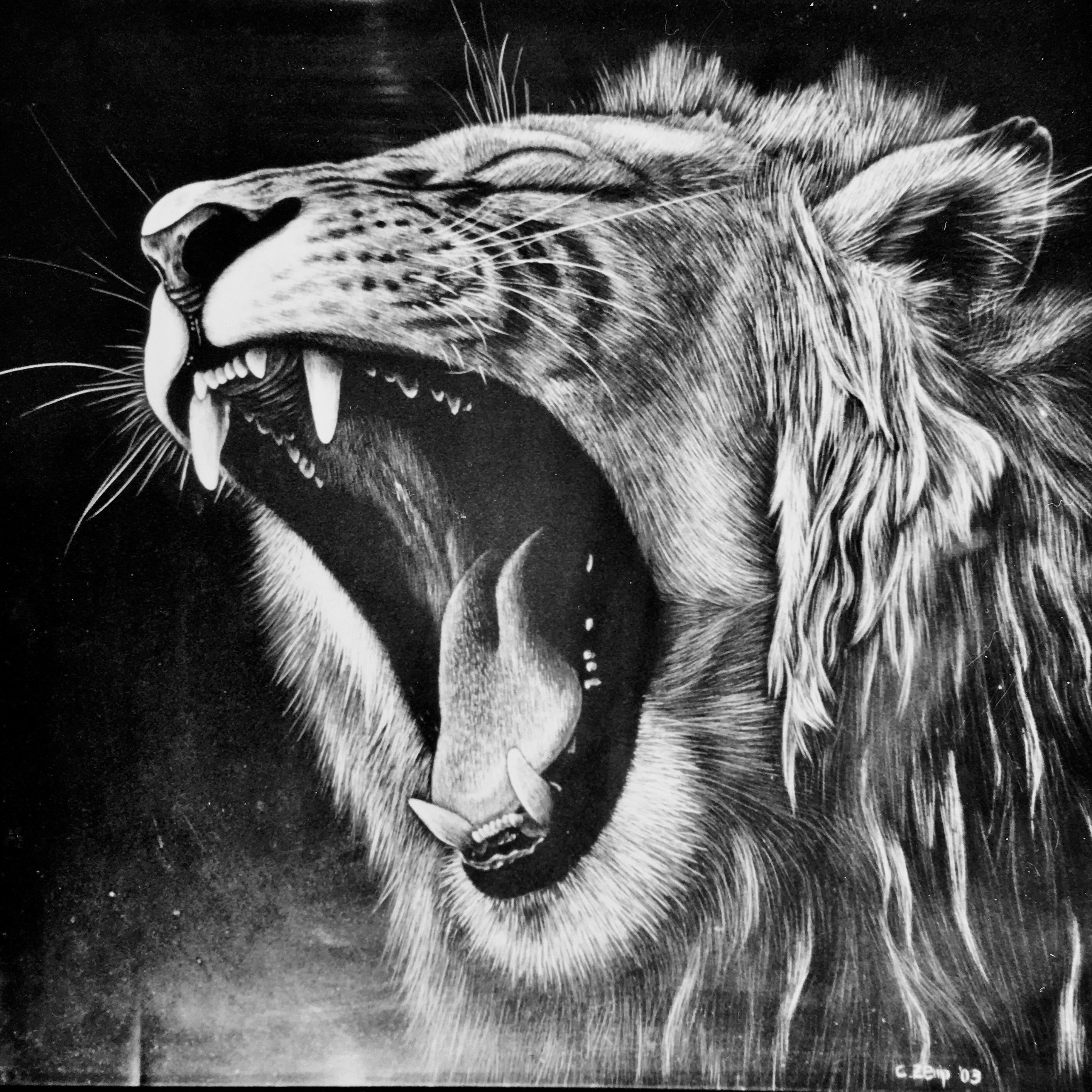Lion (nicht verkäuflich / not for sale)