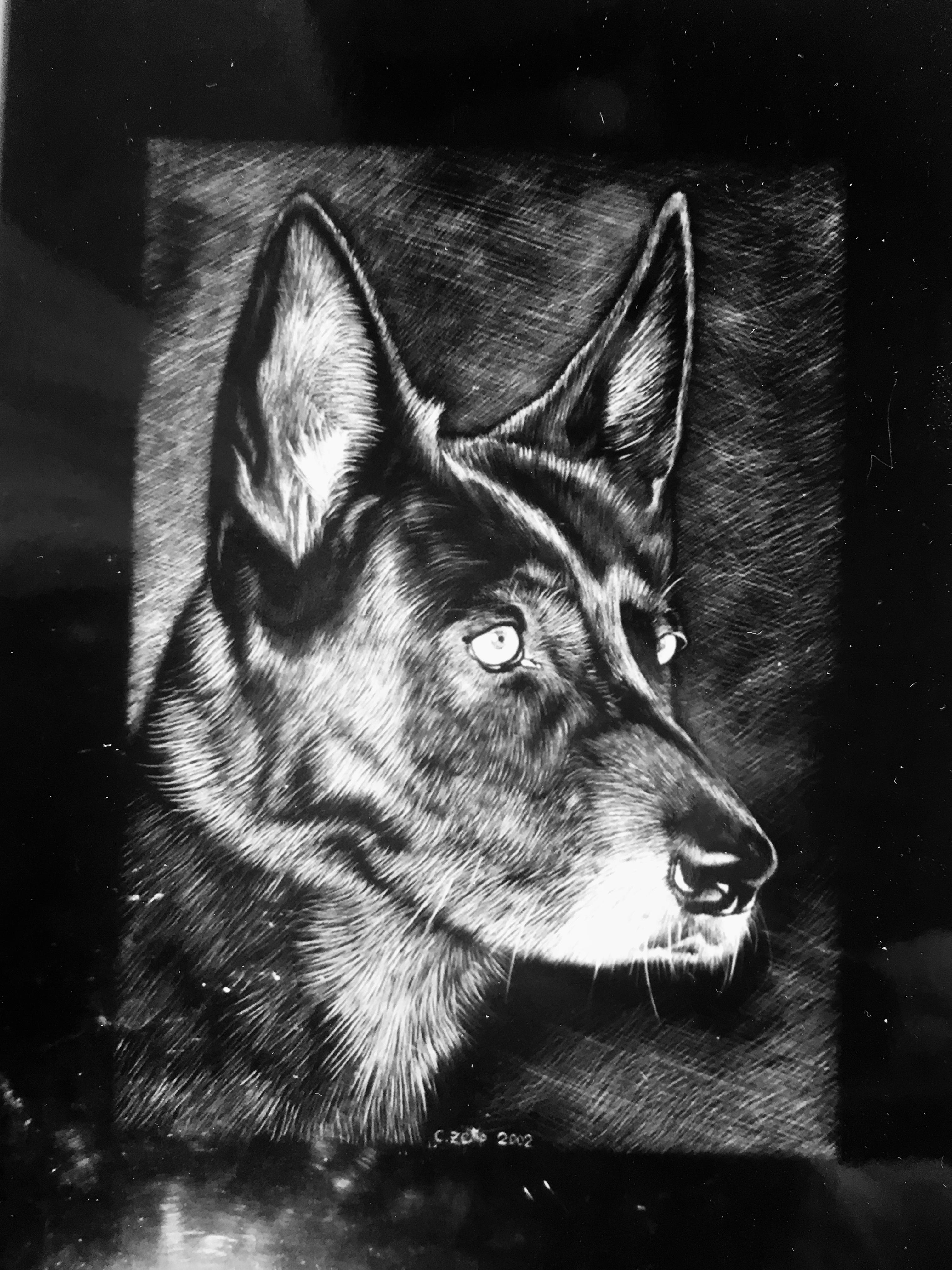 Black Dog (verkauft / sold)